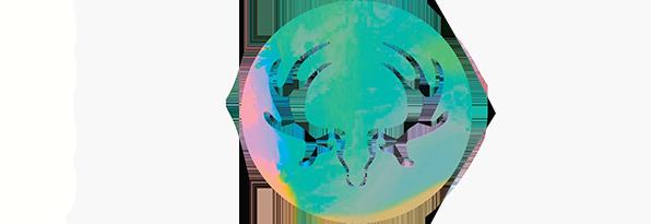 Logo_Boxneg_trans2